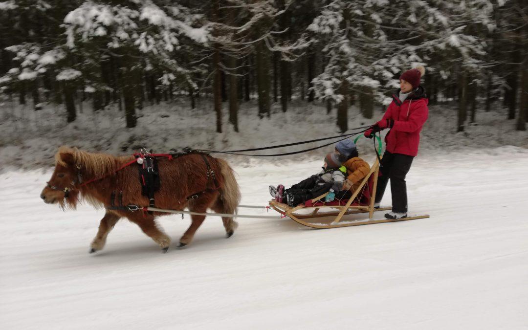 Ziemas prieki ar ponijiem – nepalaid garām!